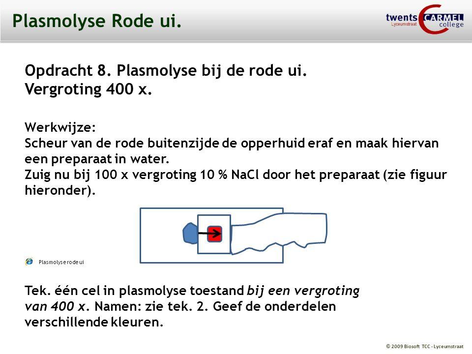 © 2009 Biosoft TCC - Lyceumstraat Plasmolyse Rode ui. Opdracht 8. Plasmolyse bij de rode ui. Vergroting 400 x. Werkwijze: Scheur van de rode buitenzij