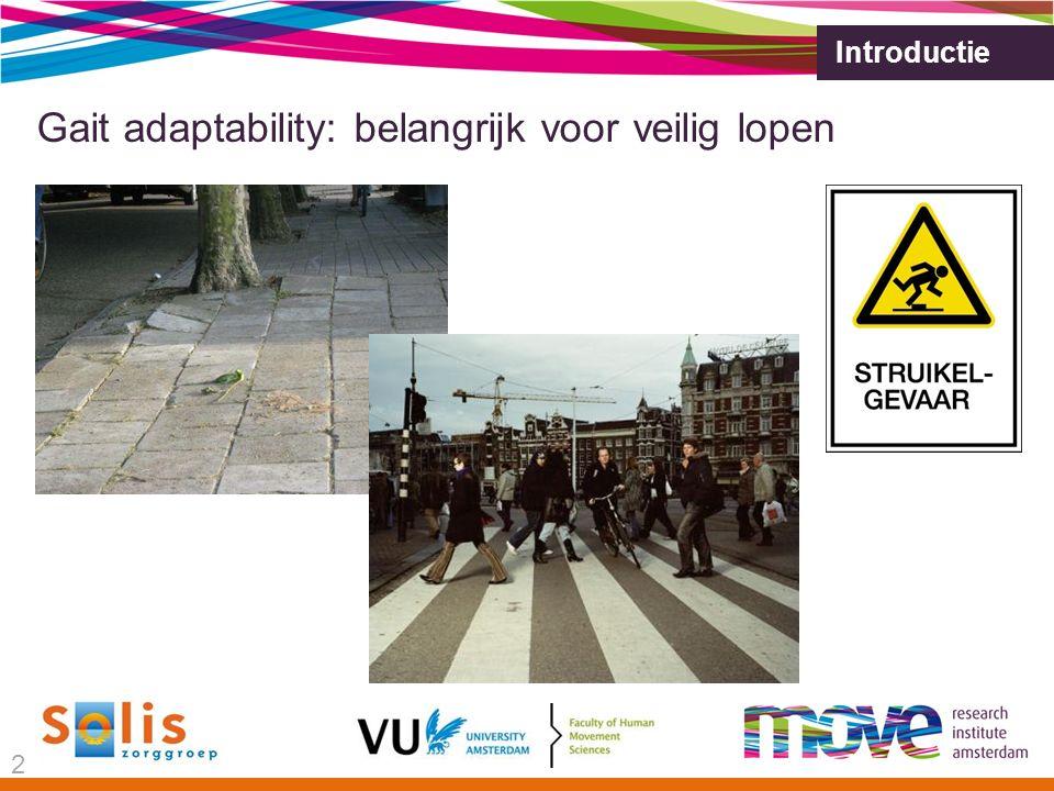 Introductie Gait adaptability: belangrijk voor veilig lopen 2