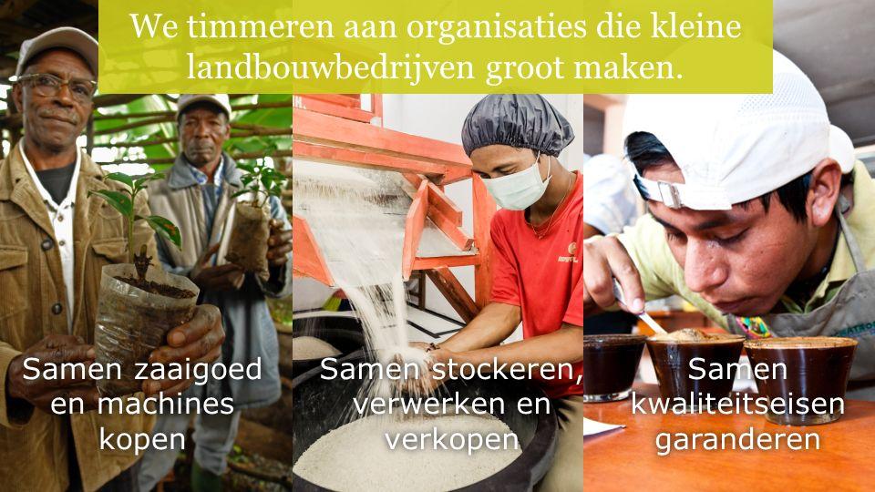 We timmeren aan organisaties die kleine landbouwbedrijven groot maken.