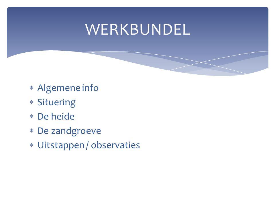 Algemene info  Situering  De heide  De zandgroeve  Uitstappen / observaties WERKBUNDEL