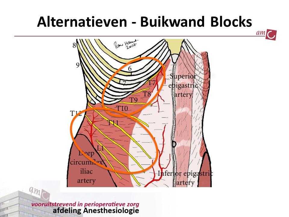 Alternatieven - Buikwand Blocks