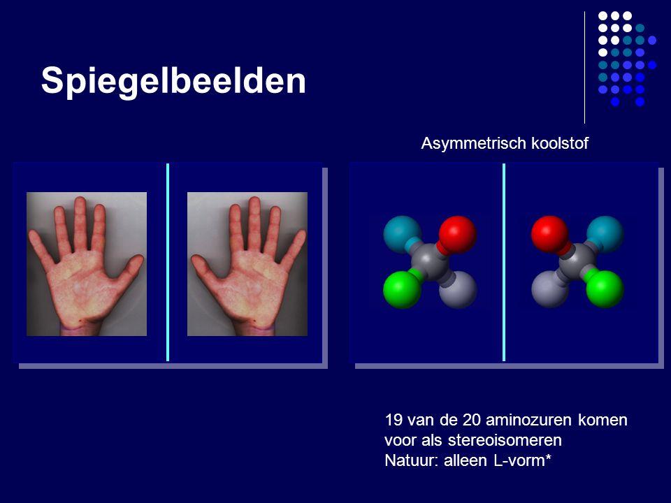 Spiegelbeelden 19 van de 20 aminozuren komen voor als stereoisomeren Natuur: alleen L-vorm* Asymmetrisch koolstof