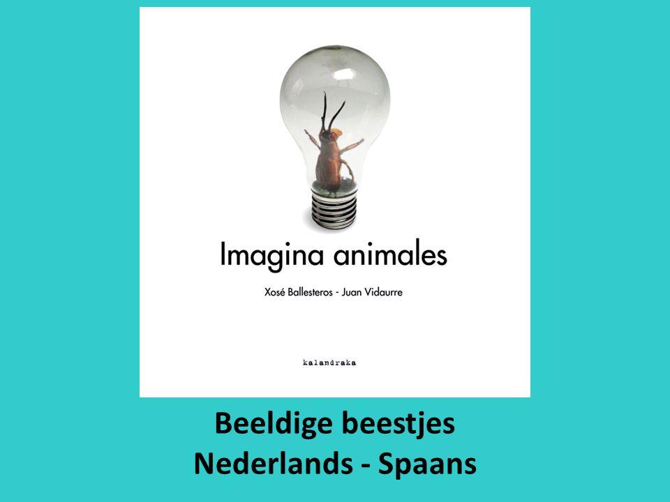 Beeldige beestjes Nederlands - Spaans