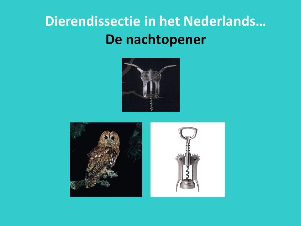 Dierendissectie in het Nederlands… De nachtopener