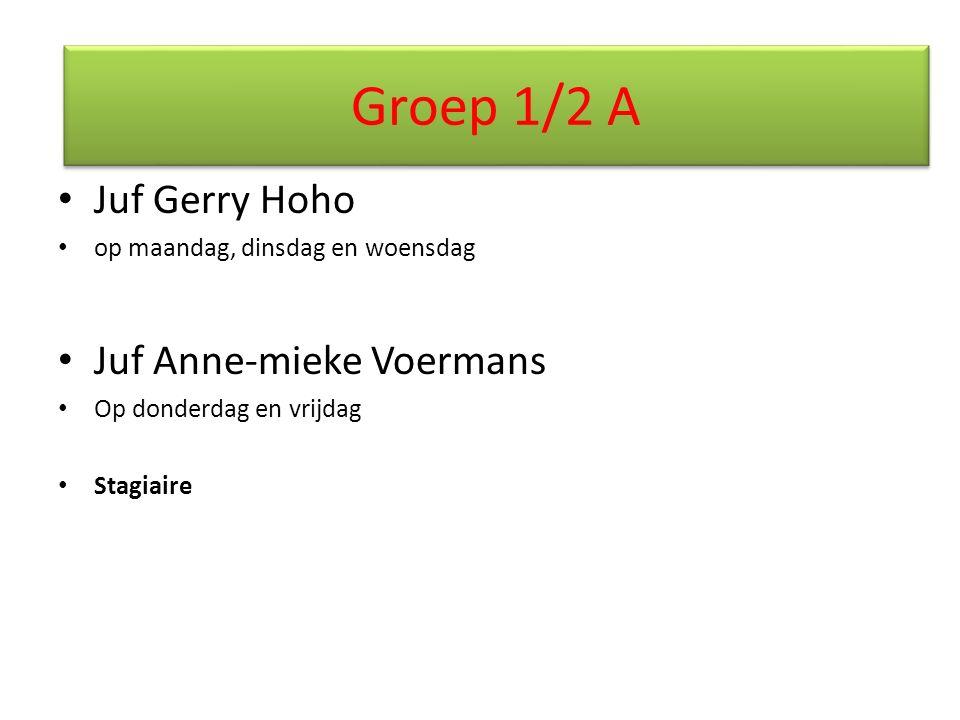 Juf Gerry Hoho op maandag, dinsdag en woensdag Juf Anne-mieke Voermans Op donderdag en vrijdag Stagiaire Groep 1/2 A