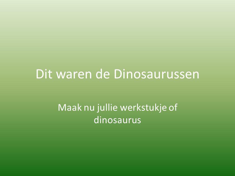 Dit waren de Dinosaurussen Maak nu jullie werkstukje of dinosaurus