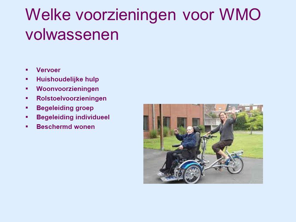 Welke voorzieningen voor WMO volwassenen  Vervoer  Huishoudelijke hulp  Woonvoorzieningen  Rolstoelvoorzieningen  Begeleiding groep  Begeleiding individueel  Beschermd wonen