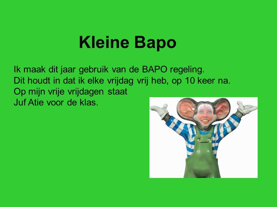 Kleine Bapo Ik maak dit jaar gebruik van de BAPO regeling.