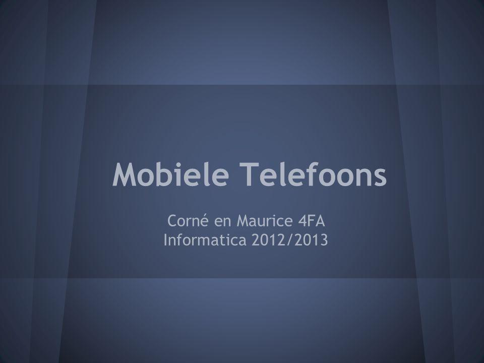 Corné en Maurice 4FA Informatica 2012/2013