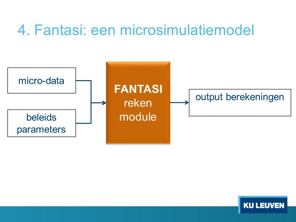FANTASI reken module micro-data beleids parameters output berekeningen 4.
