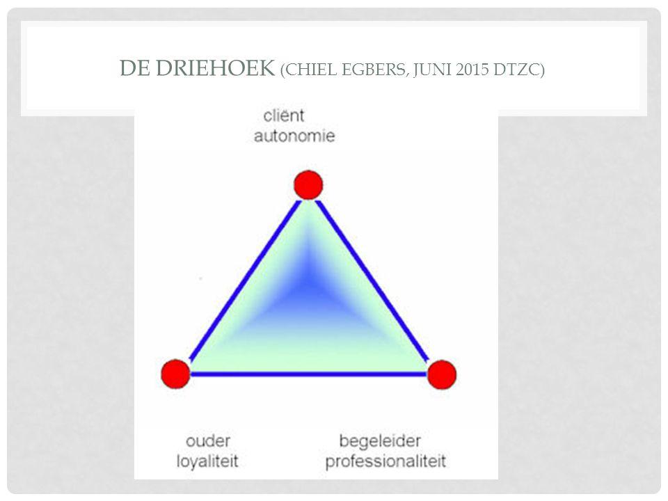DE DRIEHOEK (CHIEL EGBERS, JUNI 2015 DTZC)
