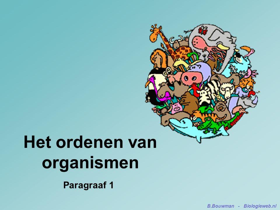 Het ordenen van organismen Paragraaf 1 B.Bouwman - Biologieweb.nl