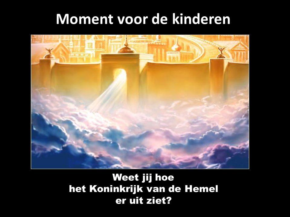 Moment voor de kinderen Weet jij hoe het Koninkrijk van de Hemel er uit ziet
