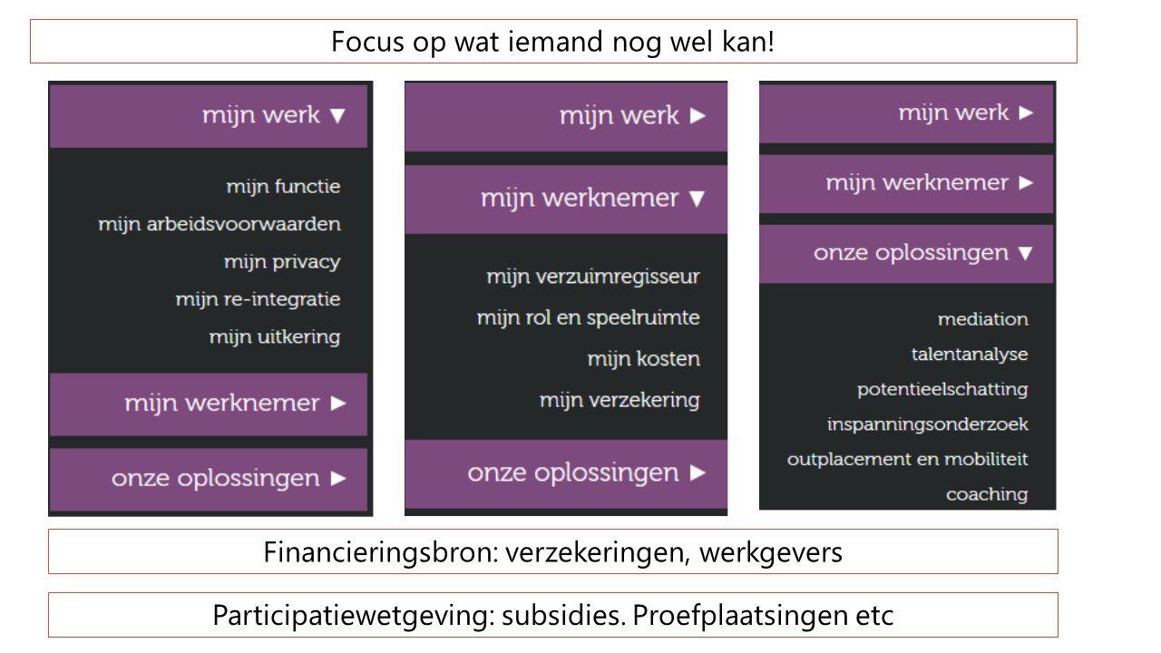 Focus op wat iemand nog wel kan! Participatiewetgeving: subsidies. Proefplaatsingen etc Financieringsbron: verzekeringen, werkgevers