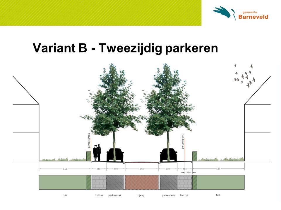 Variant B - Tweezijdig parkeren Ontwerp: [Doorsnede - Jolie]