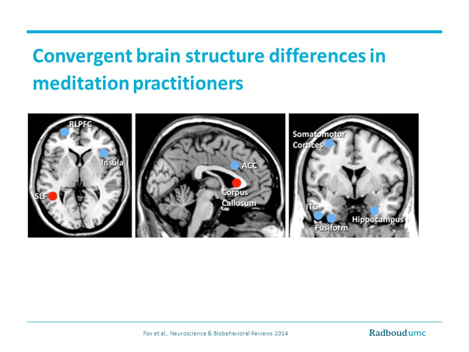 Convergent brain structure differences in meditation practitioners Fox et al., Neuroscience & Biobehavioral Reviews 2014