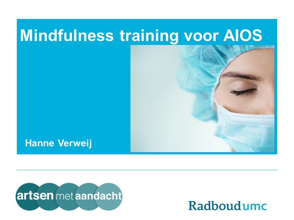 Hanne Verweij Mindfulness training voor AIOS