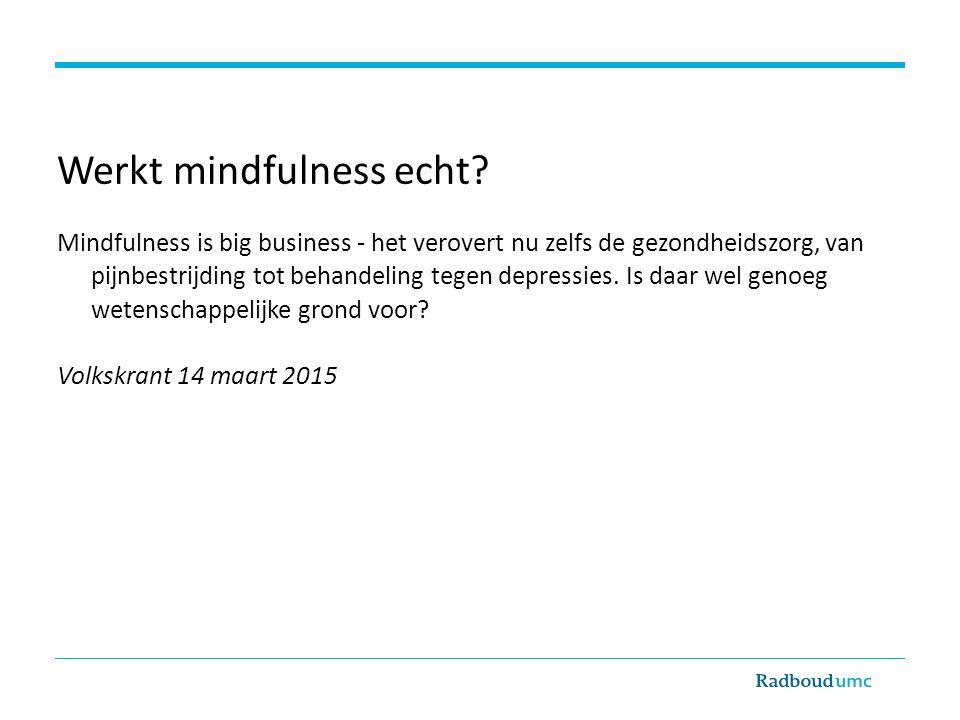 Werkt mindfulness echt.