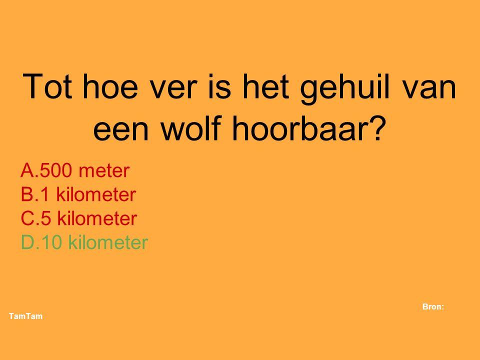 35. Tot hoe ver is het gehuil van een wolf hoorbaar? A.500 meter B.1 kilometer C.5 kilometer D.10 kilometer Bron: TamTam