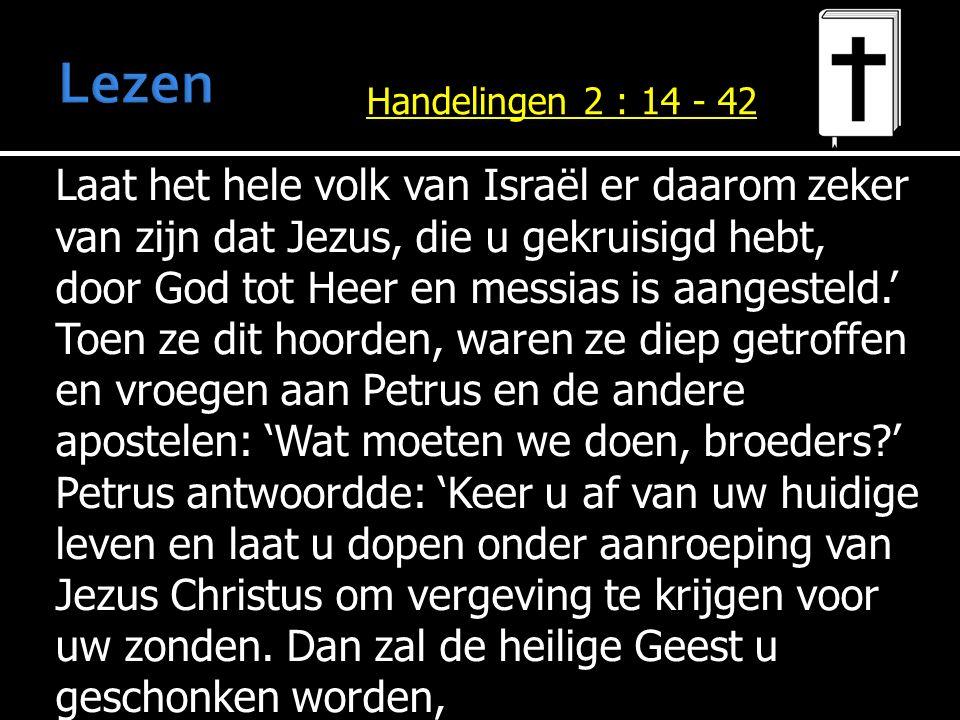 Laat het hele volk van Israël er daarom zeker van zijn dat Jezus, die u gekruisigd hebt, door God tot Heer en messias is aangesteld.' Toen ze dit hoor