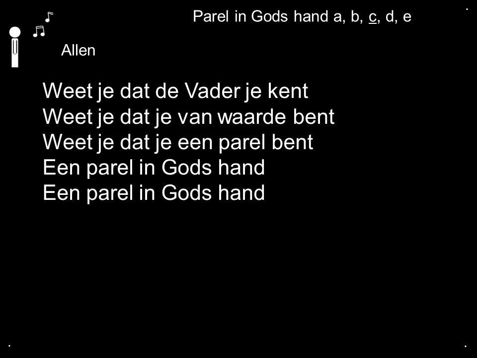 .... Allen Weet je dat de Vader je kent Weet je dat je van waarde bent Weet je dat je een parel bent Een parel in Gods hand Parel in Gods hand a, b, c