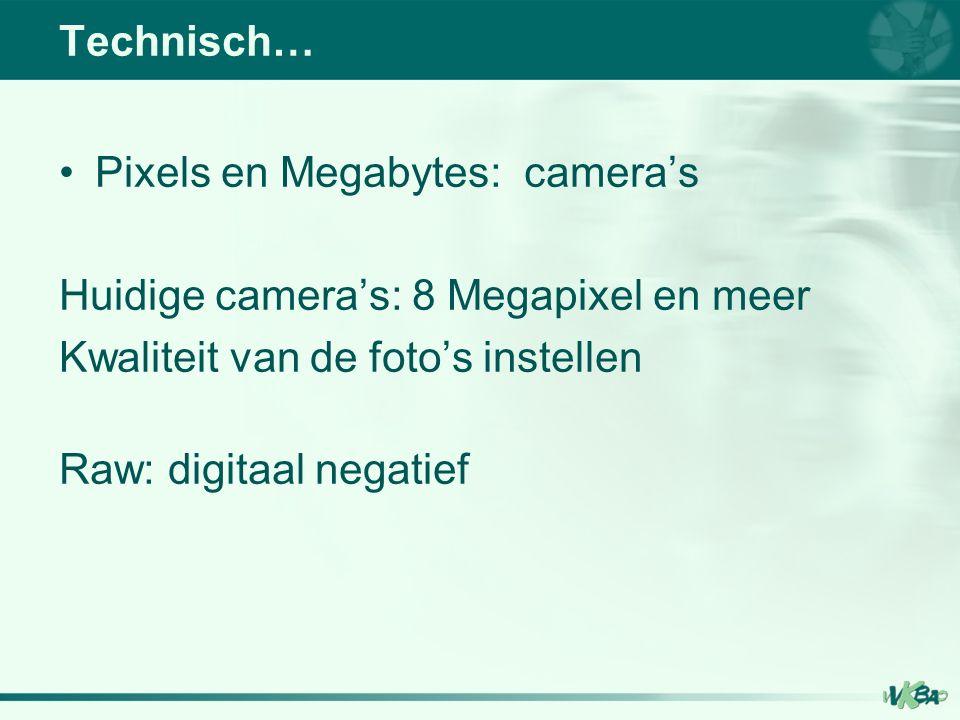 Pixels en Megabytes: camera's Huidige camera's: 8 Megapixel en meer Kwaliteit van de foto's instellen Raw: digitaal negatief Technisch…
