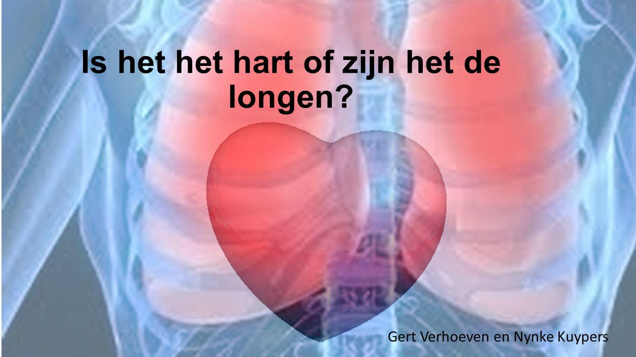 Is het het hart of zijn het de longen? Gert Verhoeven en Nynke Kuypers