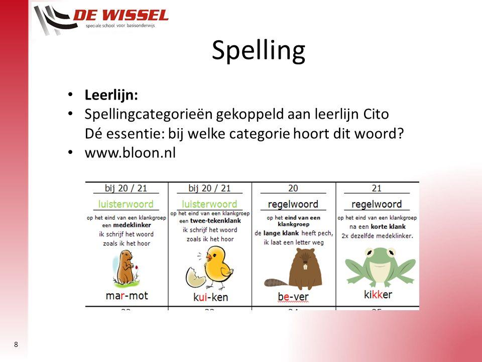 8 Leerlijn: Spellingcategorieën gekoppeld aan leerlijn Cito Dé essentie: bij welke categorie hoort dit woord? www.bloon.nl Spelling
