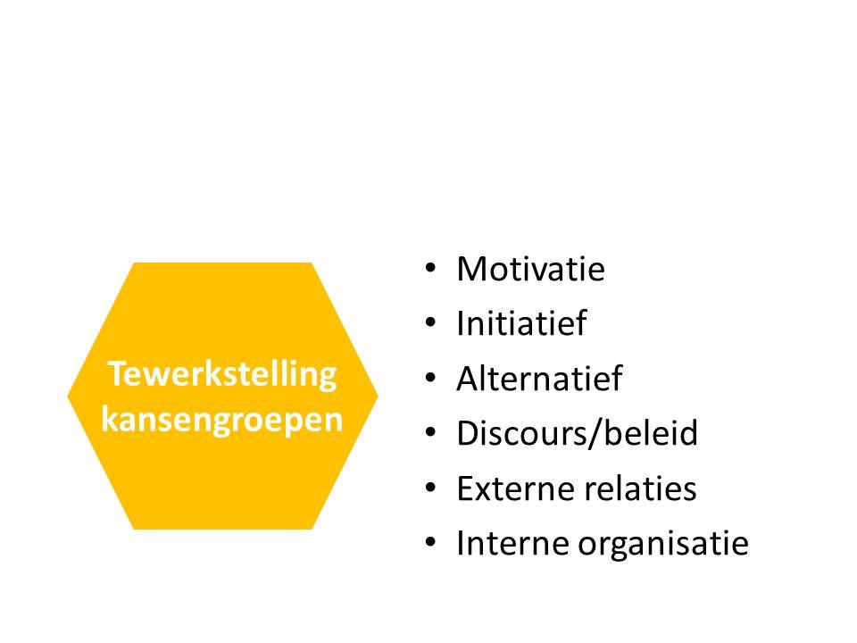 Motivatie Initiatief Alternatief Discours/beleid Externe relaties Interne organisatie Tewerkstelling kansengroepen
