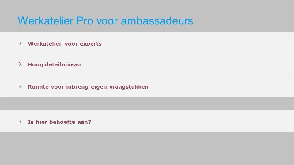 Werkatelier Pro voor ambassadeurs › Werkatelier voor experts › Hoog detailniveau › Ruimte voor inbreng eigen vraagstukken › Is hier behoefte aan