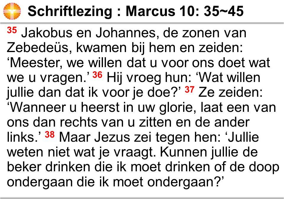 35 Jakobus en Johannes, de zonen van Zebedeüs, kwamen bij hem en zeiden: 'Meester, we willen dat u voor ons doet wat we u vragen.' 36 Hij vroeg hun: '