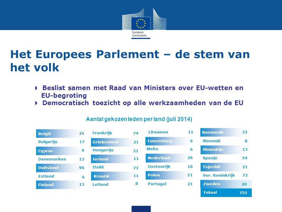 De Raad van Ministers – de stem van de EU-landen  één minister uit elk EU-land  voorzitterschap: rouleert elke zes maanden  beslist samen met het Parlement over EU-wetten en EU-begroting  stuurt het gemeenschappelijk buitenlands en veiligheidsbeleid