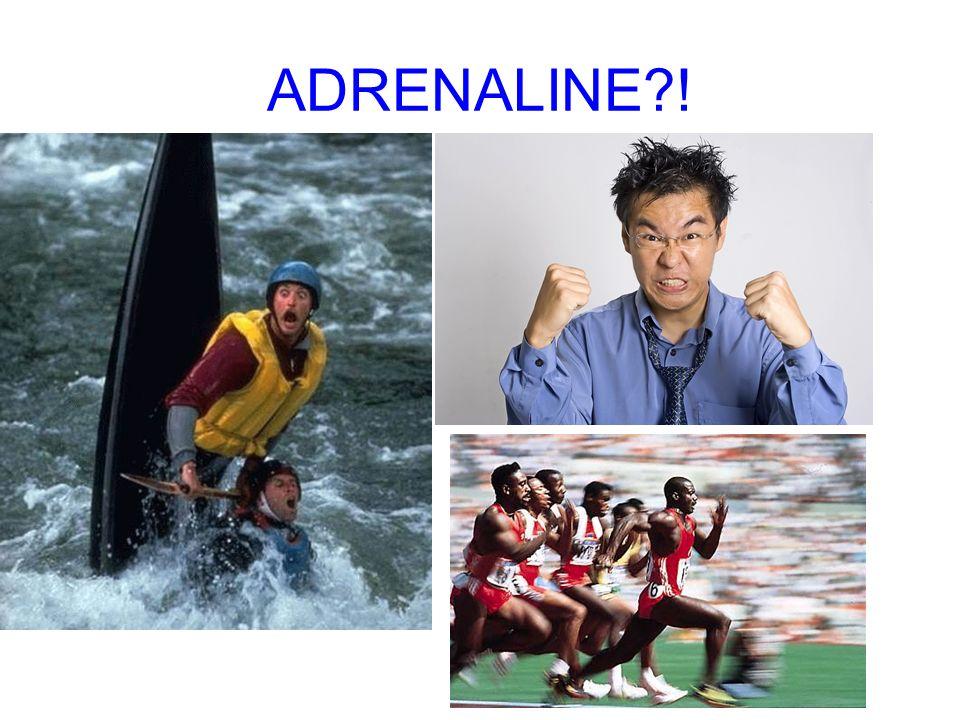 ADRENALINE?!