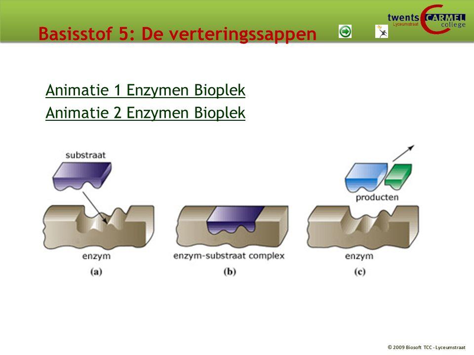 © 2009 Biosoft TCC - Lyceumstraat Basisstof 5: De verteringssappen Animatie 1 Enzymen Bioplek Animatie 2 Enzymen Bioplek