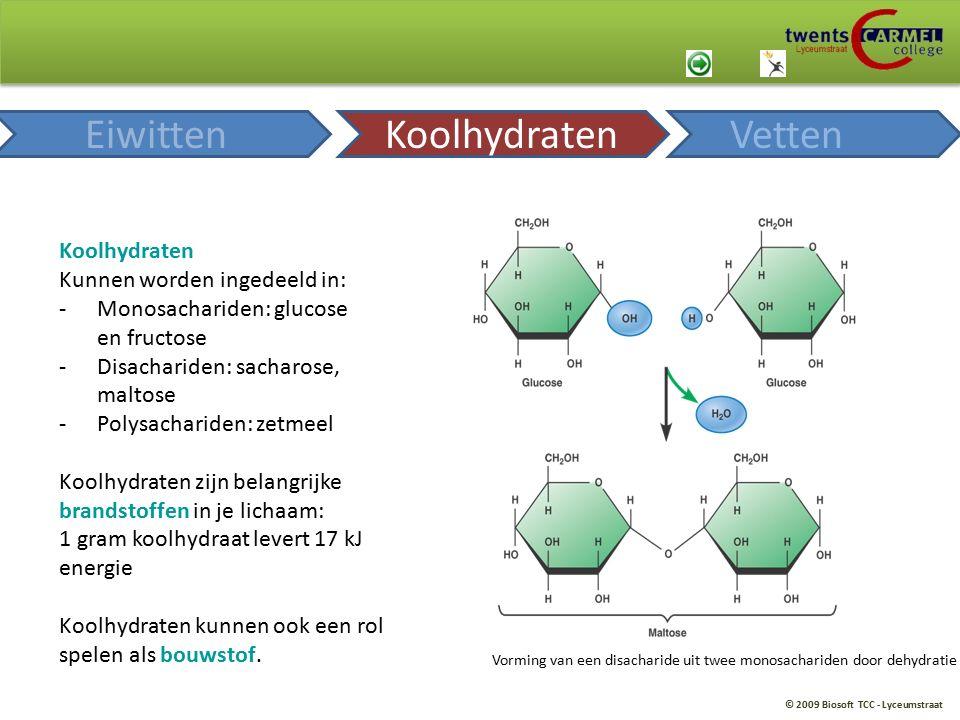 © 2009 Biosoft TCC - Lyceumstraat Koolhydraten Kunnen worden ingedeeld in: -Monosachariden: glucose en fructose -Disachariden: sacharose, maltose -Pol