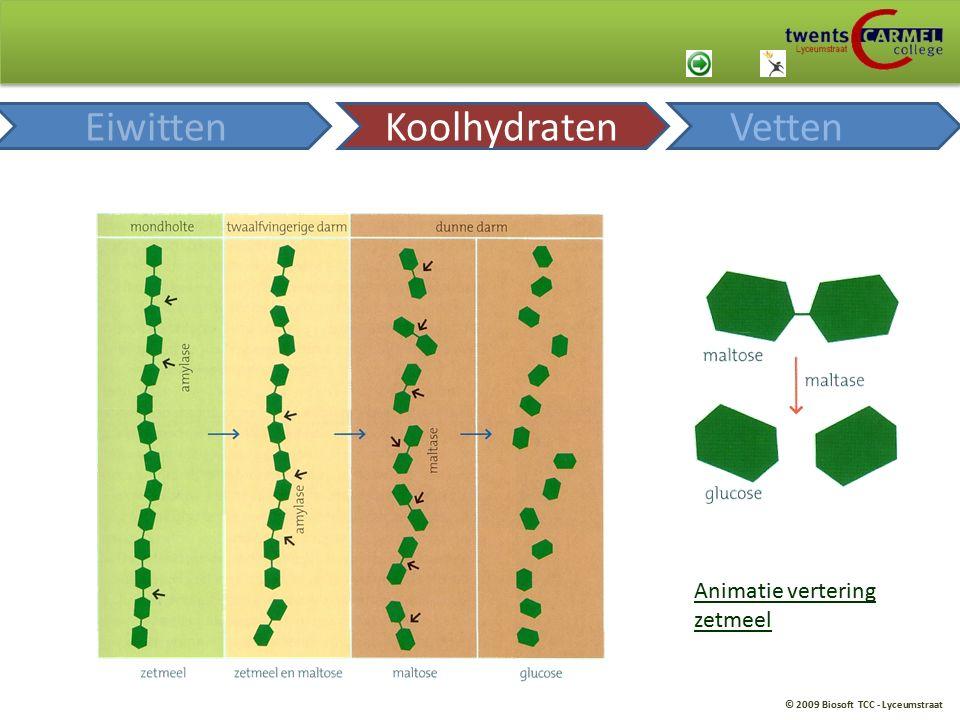 © 2009 Biosoft TCC - Lyceumstraat Animatie vertering zetmeel EiwittenKoolhydratenVetten