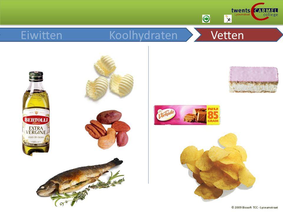 © 2009 Biosoft TCC - Lyceumstraat EiwittenKoolhydratenVetten