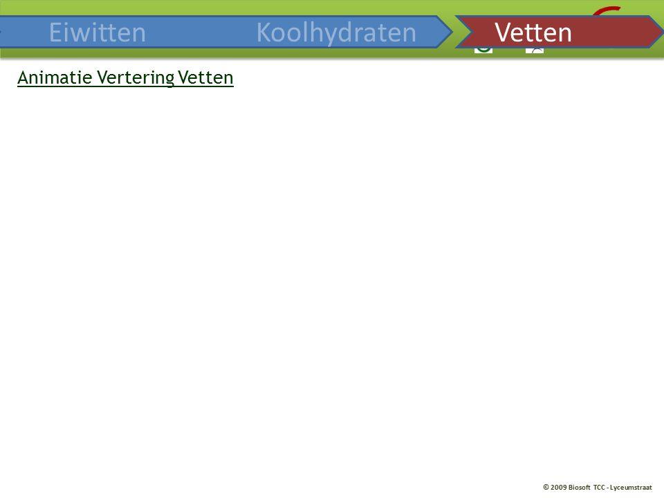 © 2009 Biosoft TCC - Lyceumstraat Animatie Vertering Vetten EiwittenKoolhydratenVetten