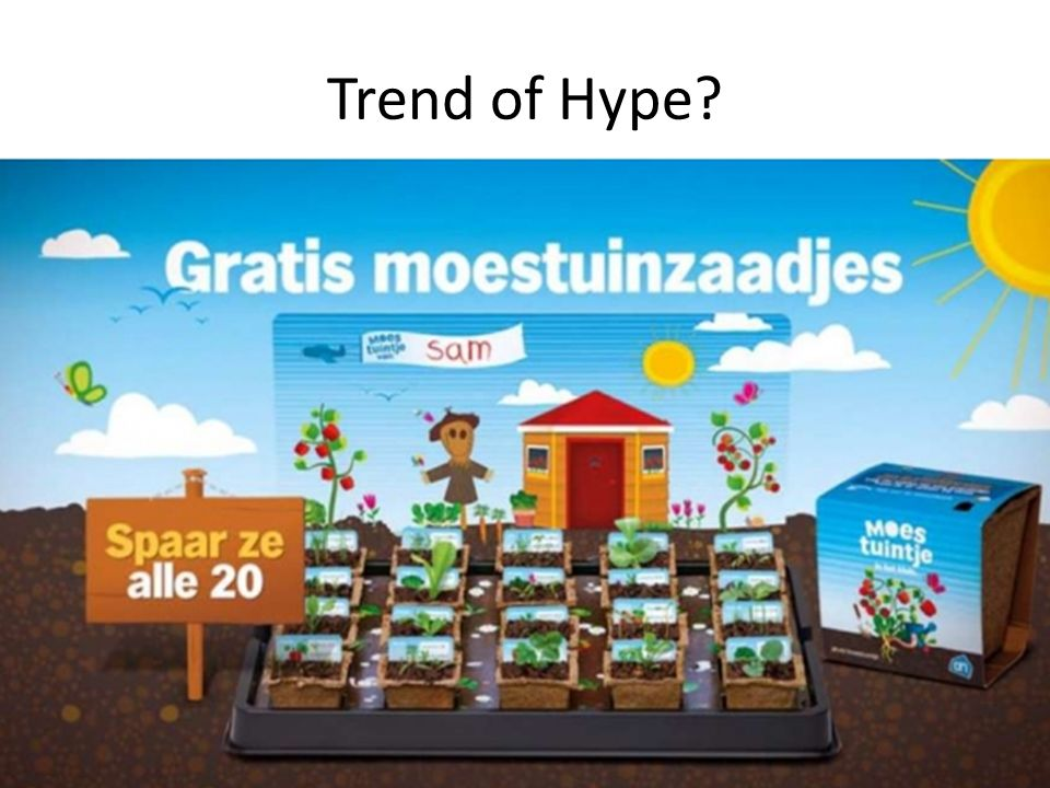 Trend of Hype 16