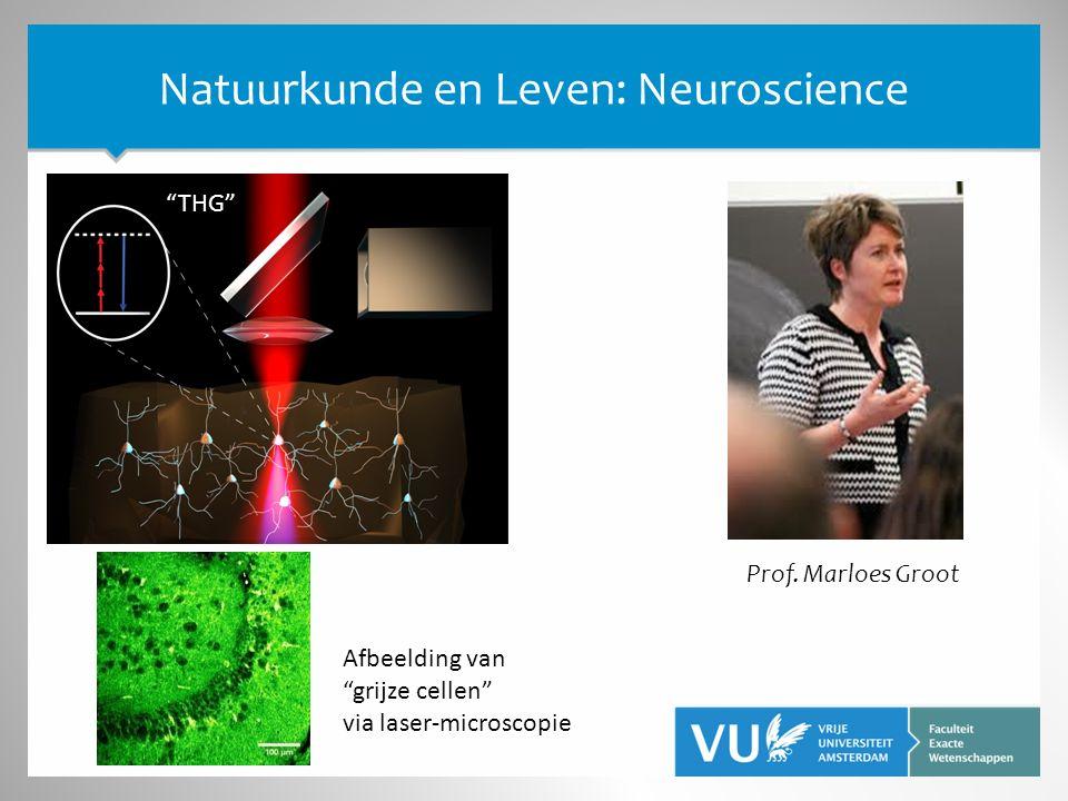 """Natuurkunde en Leven: Neuroscience Prof. Marloes Groot """"THG"""" Afbeelding van """"grijze cellen"""" via laser-microscopie"""