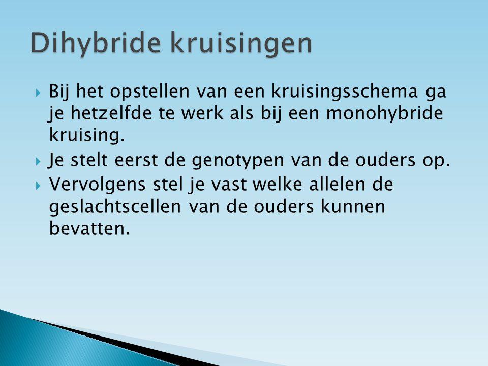  Dihybride kruising:  Een kruising waarbij gelet wordt op de overerving van twee erfelijke eigenschappen.  Bij een dihybride kruising zijn twee gen