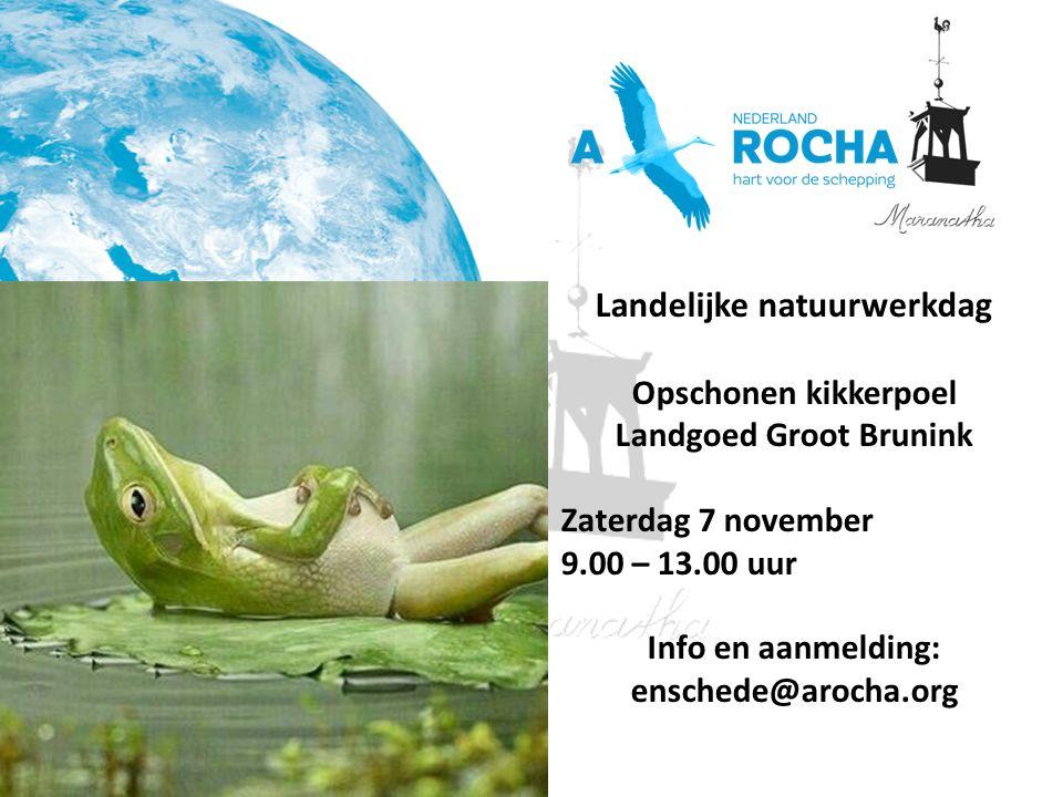 Landelijke natuurwerkdag Opschonen kikkerpoel Landgoed Groot Brunink Zaterdag 7 november 9.00 – 13.00 uur Info en aanmelding: enschede@arocha.org