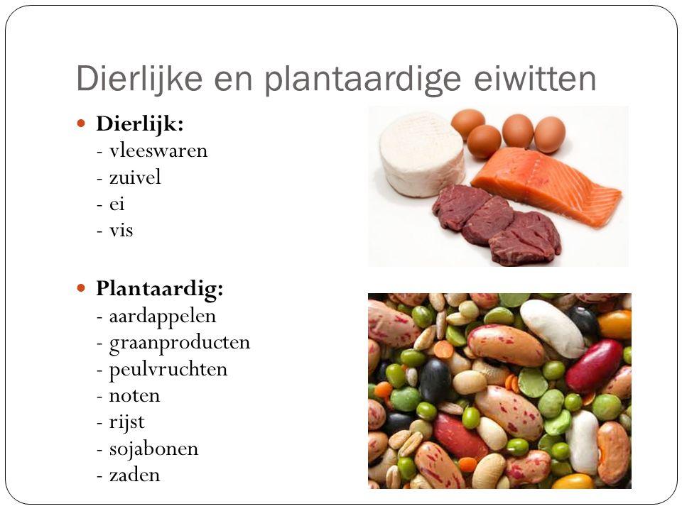 Dierlijke en plantaardige eiwitten Dierlijk: - vleeswaren - zuivel - ei - vis Plantaardig: - aardappelen - graanproducten - peulvruchten - noten - rijst - sojabonen - zaden