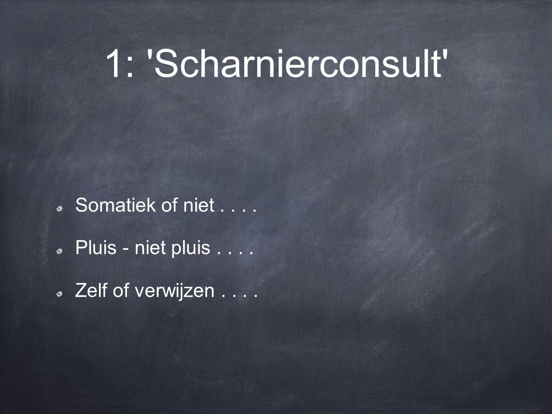 1: 'Scharnierconsult' Somatiek of niet.... Pluis - niet pluis.... Zelf of verwijzen....