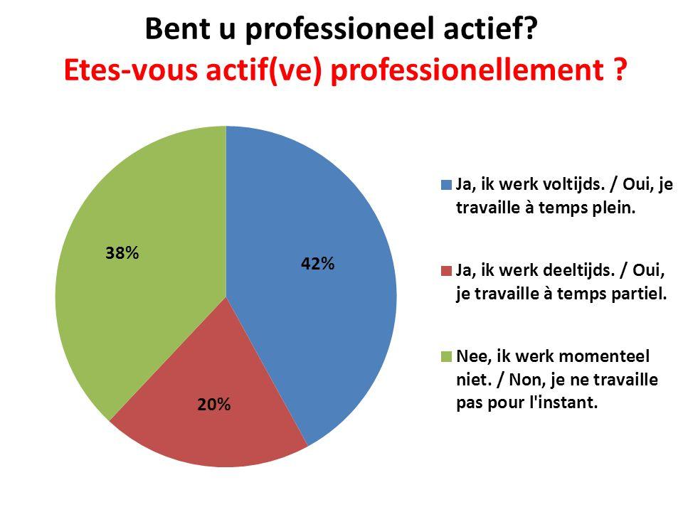 Bent u professioneel actief? Etes-vous actif(ve) professionellement ?