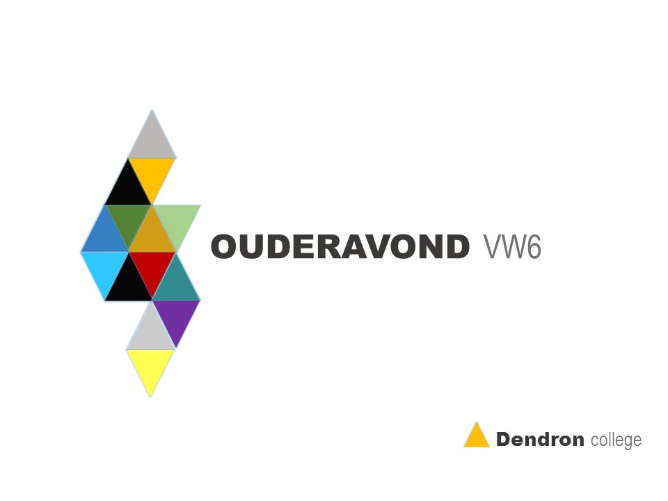 OUDERAVOND VW6 Dendron college