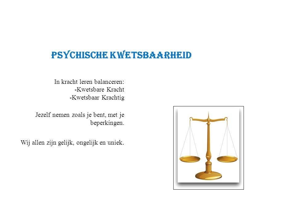 Psychische kwetsbaarheid In kracht leren balanceren: -Kwetsbare Kracht -Kwetsbaar Krachtig Jezelf nemen zoals je bent, met je beperkingen.