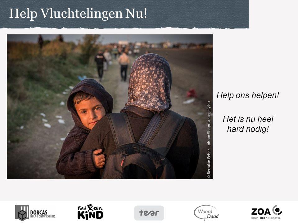 Wilt u bidden voor … -Voor snelle en effectieve hulp aan vluchtelingen.