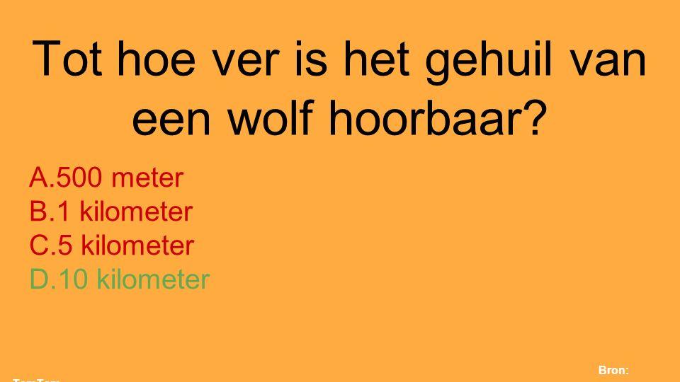 Tot hoe ver is het gehuil van een wolf hoorbaar? A.500 meter B.1 kilometer C.5 kilometer D.10 kilometer Bron: TamTam