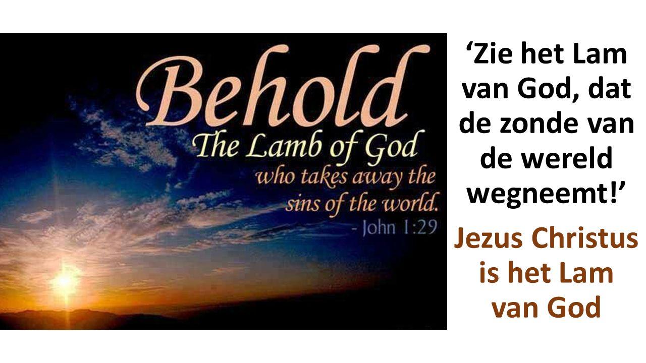 'Zie het Lam van God, dat de zonde van de wereld wegneemt!' Jezus Christus is het Lam van God